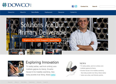 Dowco Corporate - Online Strategy and Execution